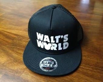 Walt's World (snapback)