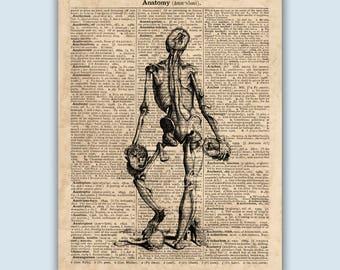 Anatomy Art Print, Human Skeleton Print, Skeleton Art Print, Gift for Physicians, Skeleton Poster, Anatomical Art