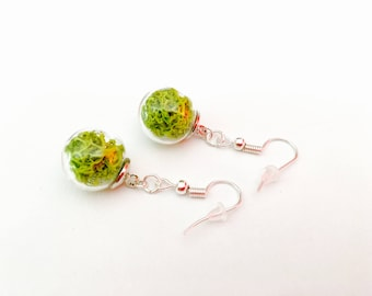 Earrings, glass terrarium, stabilized foam(MOSS)