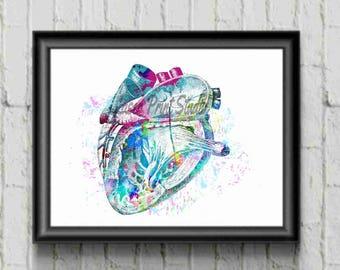 Anatomical Heart- Human Anatomical Heart Poster Medical Print - Watercolor Heart Print- Science Gift-  Watercolor Print