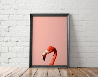 Pink Flamingo Print, Pink Flamingo Printable, Pink Flamingo Art Print, Peekaboo Home Decor, Animal Print, Nursery Decor Printable