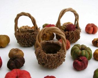 Miniature Acorn Basket