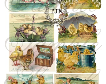 Cute Chicks Collage Sheet--Instant Download