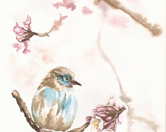 Finch - Cherry Blossoms - Original Watercolor 8.5 x 11 - Songbird, Flower, Spring
