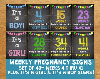 Weekly Pregnancy Chalkboard Signs Weeks 4-41, Maternity Signs, Maternity Photos, Maternity