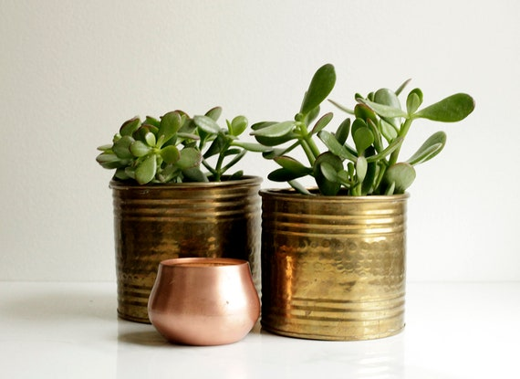 Brass Planters   Set Of Two   Pair Of Planters   Succulent Planters   Boho Decor   Brass Decor   Shiny Decor   Indoor Planter   Housewarming by Etsy