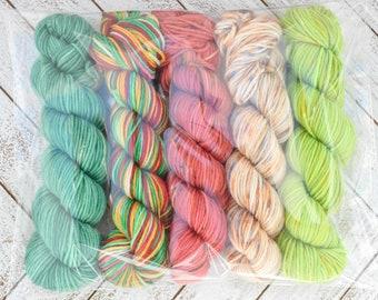 Half Christmas Mini Kit - Hand Dyed Sock Yarn Heavy Fingering Weight 20g Mini Skein 92yds PlumpleBee Base 75/25 Superwash Merino/Nylon