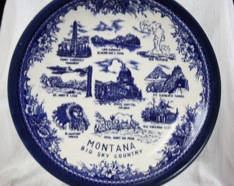 Beautiful Vintage Montana Blue and White Collectible Plate Stamped Japan