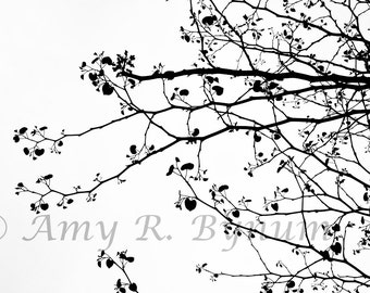 Black Heart-Shaped Leaves on White Background. Silhouette. Fine Art Photography, Canvas or Paper Print