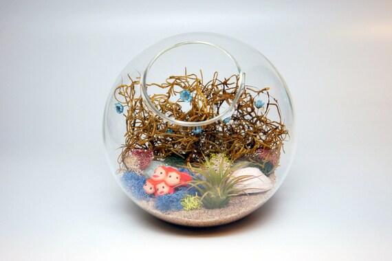 Diy ponyo inspired terrarium kit with sea urchin shell moss sand diy ponyo inspired terrarium kit with sea urchin shell moss sand and more from tghgrows on etsy studio solutioingenieria Image collections