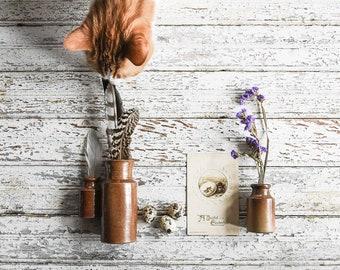 Antique Stoneware Ink Bottles, Rustic Bottles, Bud Vases, Spice Jars