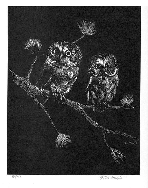 George Kontoupis Scratch board print 30/100 Northern Saw Whet Owls