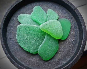 Kelly and Citron GREEN Genuine Flawless Sea-Tumbled Sea Glass Jewelry Grade Loose (7)