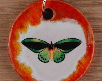 Orginal handicraft: funny pendant with a butterfly. jewellery charm science biology gift