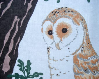 Charming owl dish towel - by Sheila Rowse