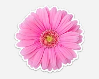 Bumper Window Laptop Sticker Light Pink Gerbera Daisy