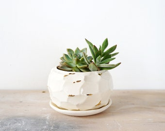 Faceted white and gold planter no. 5. The Object Enthusiast. Home decor planter. Ceramic planter. Gold ceramics. Indoor plants.