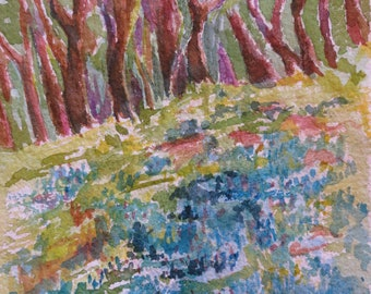 Bluebonnet Forest