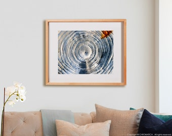 Salty Log Print.  Nature photography, tree, white, decor, wall art, artwork, large format photo.