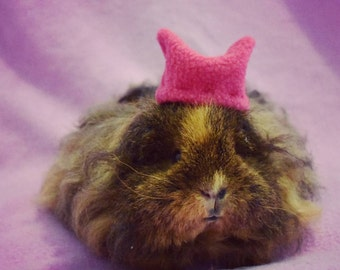 Guinea Pig Marches for Women Sticker