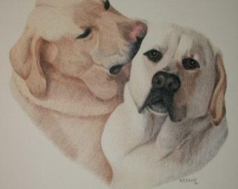 PET PORTRAITS, custom pet portraits, dog portraits, cat portraits, horse portraits