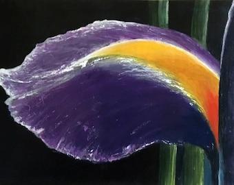 Acrylic Cala (No. 113)