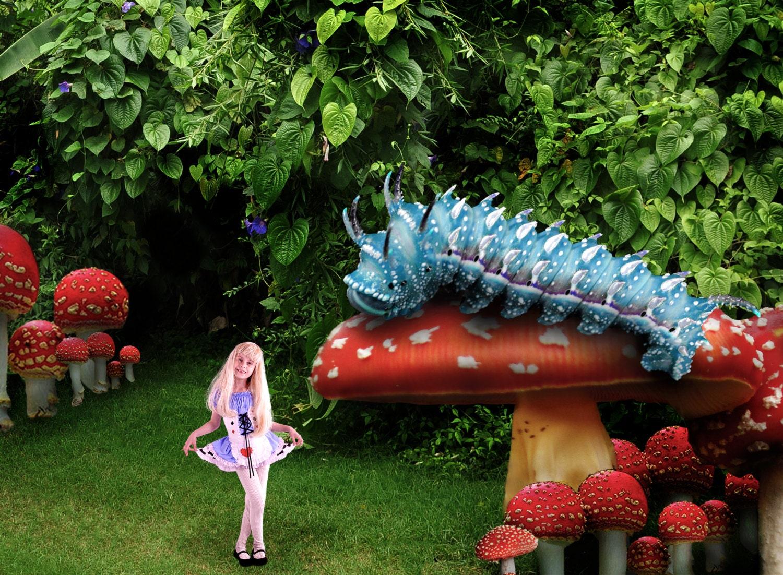 Alice in Wonderland Digital Backdrop Digital Background