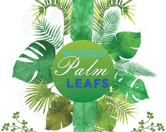 Palm leaves watercolor clip art pack, tropical leafs collection. PNG, jpg, svg, vector illustrator & corel files included, instant download