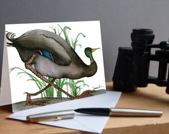 Mallard Duck bird fun greeting card
