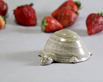 Ceramic Turtle - Animal - Dark Stoneware - Home Accent