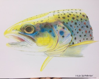 SMALL 8.5x11 Brown Trout Print limited edition