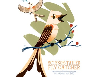 Scissor-tailed Flycatcher Oklahoma State Bird Illustrated Print- 8x10 Limited Edition