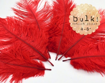 RED - BULK - 4-8 inches - Ostrich Feathers Drabs - Wholesale Feathers