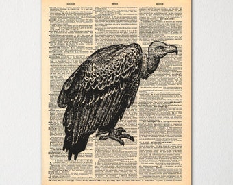 Vulture Dictionary Art Print / Vintage Dictionary Paper
