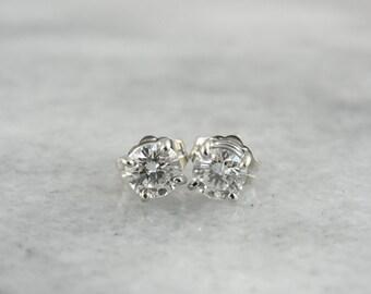 Timeless Diamond Stud Earrings in White Gold KZKWDL