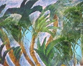 Metamorphosis Palms