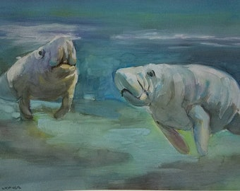 Manatees feeding original watercolor and Gouache painting