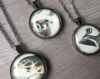 Bird Pendant Necklace Mixed Media Found Book Pages JJ Audubon's Birds Round and Rectangular