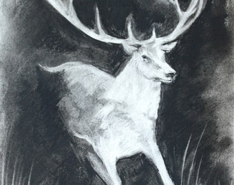 Original Charcoal White Stag drawing