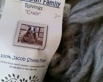 Jacob Sheep Roving - 2 oz.- Ready to spin or craft