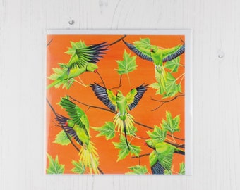 Flying Parakeets on Sunset Background Greetings Card