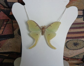 REAL Miniature Luna Moth Sterling necklace THICK & SOLID