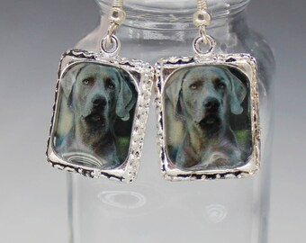 Weimaraner Gray Dog Puppy Picture Earrings Dimensional 3D Silver