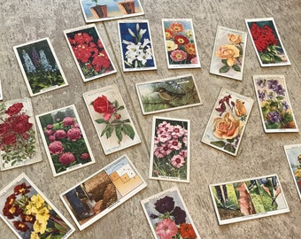 Mixed craft pack of cigarette cards