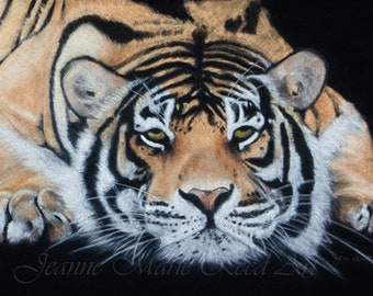 "Wildlife Art ""Night Watch"" 