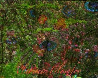 "Photo Art Paris ""Spring smile"""