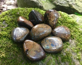"Bronzite ~ Large tumbled stones ~ 1.3"" - 2"""