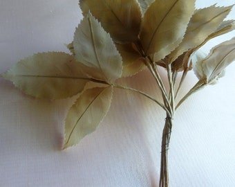 36 Coffee Vintage Leaves Silk Millinery German in Cafe au Lait for Bridal, Floral Design, Hats, Fascinators ML 91