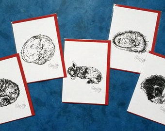 Greeting Card set nr. 2 'Sleeping Animals'