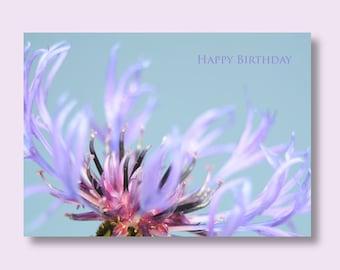 Flower Birthday Photo Card, Cornflower Card, Flower Card, Floral Birthday Card, Blue Birthday Card, Greetings Card